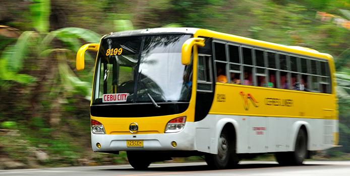 cereb-lines-bus